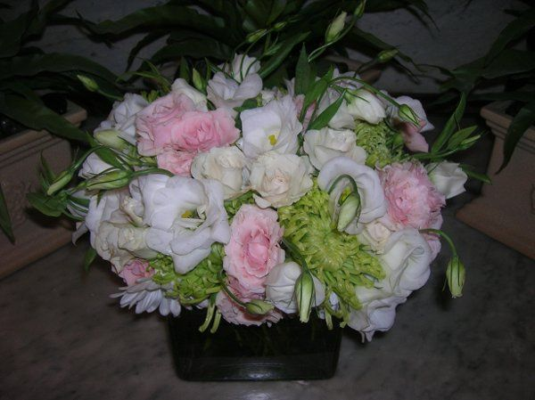 Tmx 1238122514082 Cottreaucasey125 West Bridgewater wedding florist
