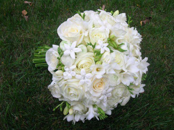 Tmx 1238122544035 Cottreaucasey268 West Bridgewater wedding florist