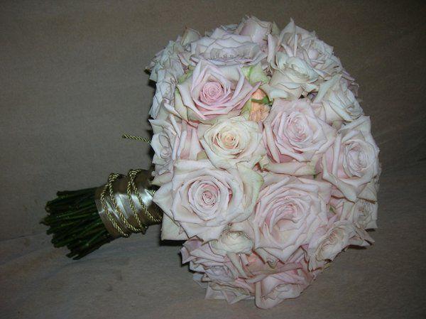 Tmx 1238122577472 Dohretyandhodolitz029 West Bridgewater wedding florist