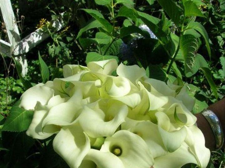 Tmx 1238122608988 Flowerpics2006041 West Bridgewater wedding florist