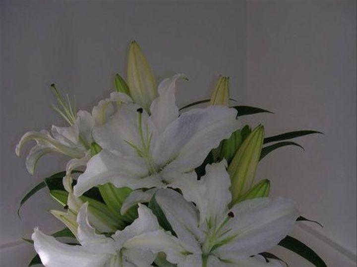 Tmx 1238122613253 Flowerpics2006060 West Bridgewater wedding florist