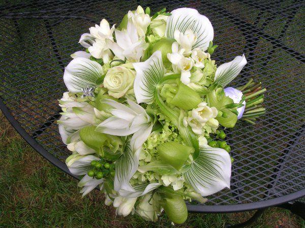 Tmx 1238122638441 Flowersrockportvolvohouse094 West Bridgewater wedding florist