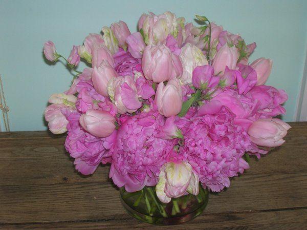 Tmx 1238122662472 Houseandpeonies001 West Bridgewater wedding florist