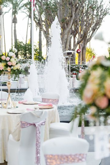 Reception by the Fountain