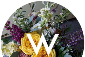Wasserman's Flowers & Gifts