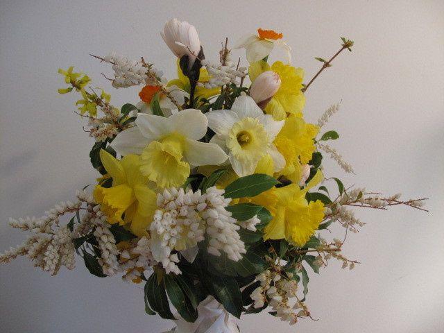 daffodils andromeda magnolia buds