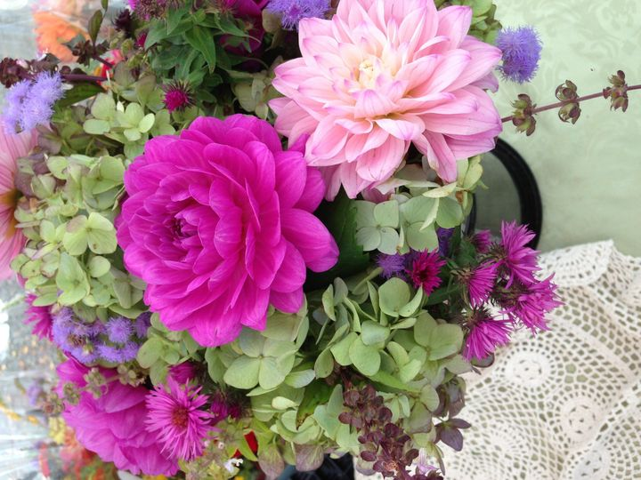 purple dahlia and greenhydrangea 4