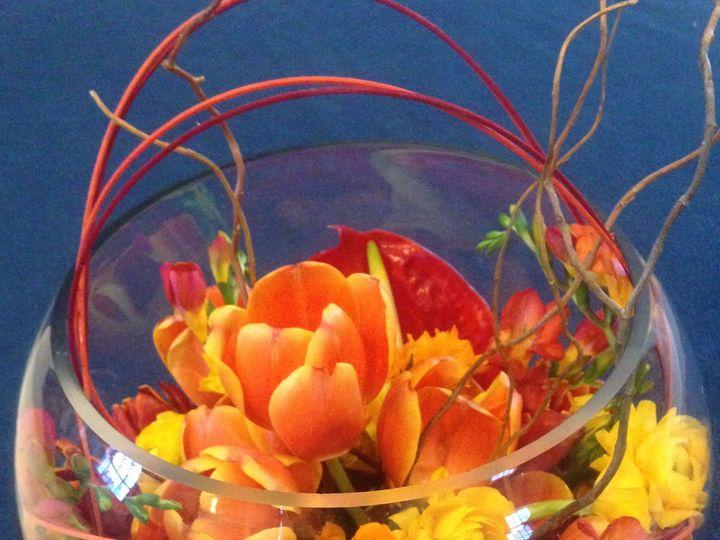 Tmx 1539017807 44a533c1ba2867d0 1539017805 94746eb7628cd0be 1539017817883 5 Spring Bubble.2 Southport wedding florist