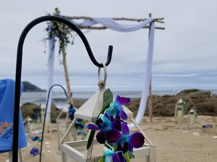 Tmx 33020800 1962339343797204 4257307210272473088 N 51 787384 157759466774133 Santa Cruz, CA wedding florist