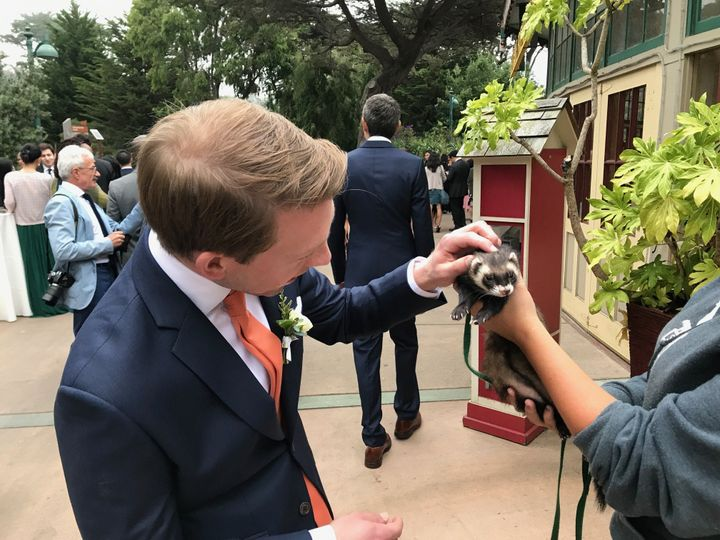 Guests love getting to know the animals