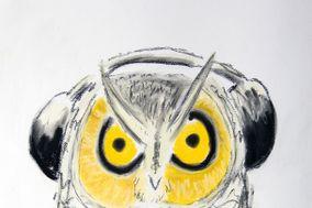Night Owl Entertainment Services