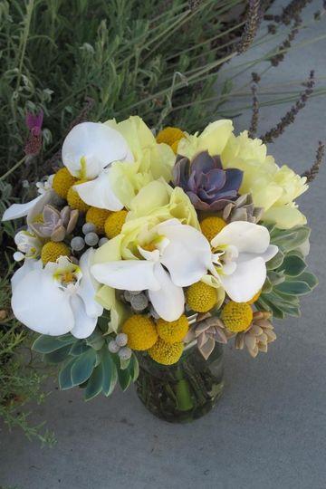 Succulents balance the elegance of white phales