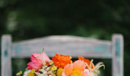 Sweet Pea Flowers Denver