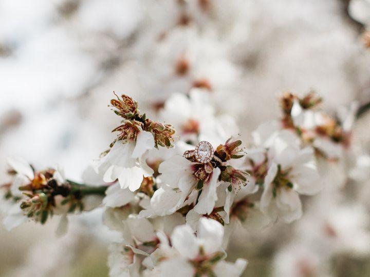 Tmx Engagement Cherry Blossom 51 659484 159545696722054 Portland, OR wedding videography
