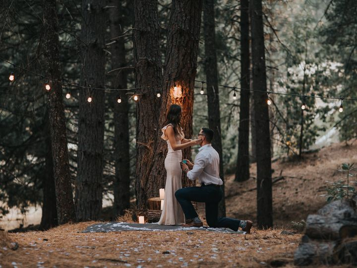 Tmx Forest Engagement Photo 3 51 659484 159545679511657 Portland, OR wedding videography
