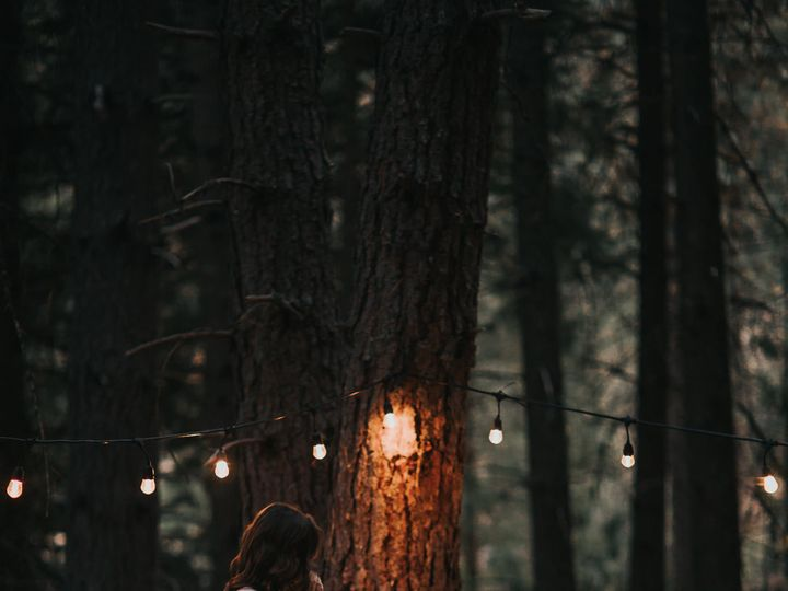 Tmx Forest Engagement Photo 5 51 659484 159545679876799 Portland, OR wedding videography
