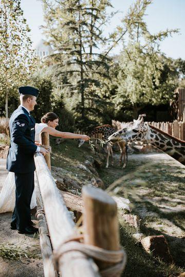 Cincinnati Zoo And Botanical Garden Venue Cincinnati Oh Weddingwire