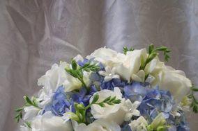 Sussex County Florist