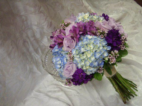 Tmx 1326142855537 0507101323a Sussex wedding florist