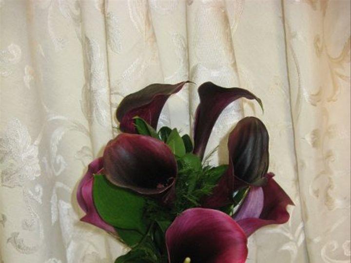 Tmx 1326143629025 All2178 Sussex wedding florist
