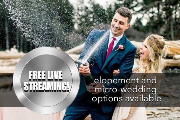 elopement the knot with this ring wedding films 51 321684 158624844016537