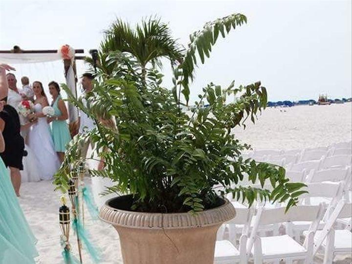 Tmx 1485643224326 Fbimg1462102580137 Tampa wedding rental