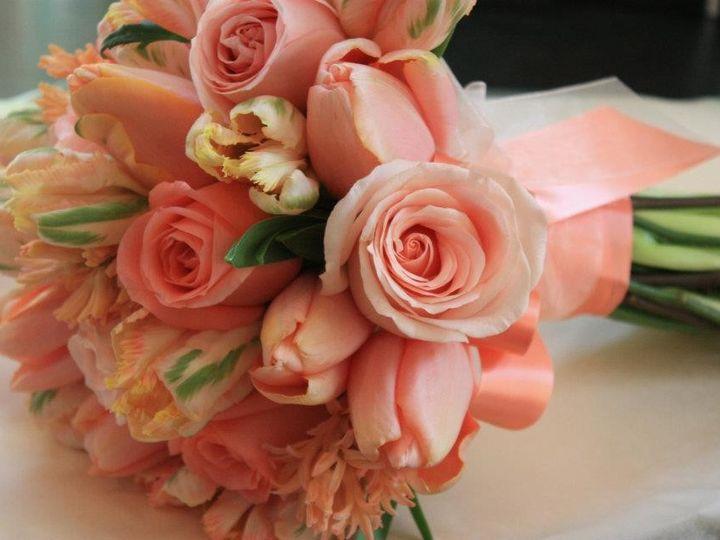 Tmx 1396105724479  Salem, Massachusetts wedding florist