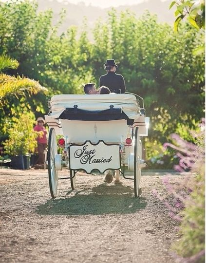 800x800 1422380427409 angelcorn just married carriage