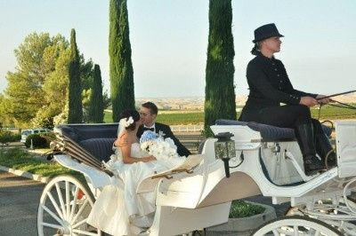 800x800 1422380501284 faith dent wedding carriage 400x266