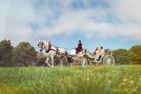 White Horse Carriage Co