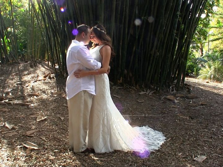 Tmx Frame 293031 51 997784 Orlando, FL wedding videography
