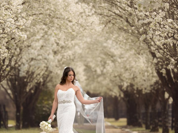 Tmx 1533750656 Cdb506b9bc77f15a 1533750653 2d54066bf6ab3210 1533750650617 18 Spring 7 Port Jefferson, NY wedding photography