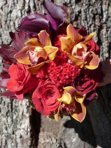 Tmx 1426622821176 3 Clermont wedding florist