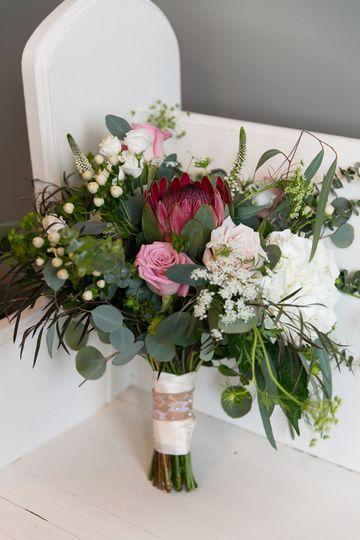 Protea pretty