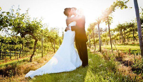 Wedding at a Missouri Vinyard