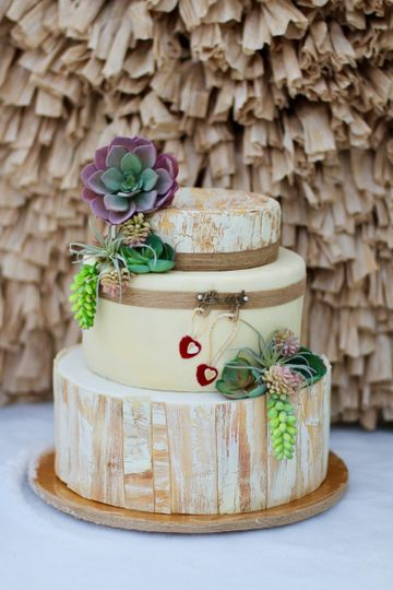 Boho Chic cake with succulents