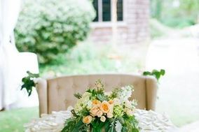 Waterford Event Rentals...Chair Covers & More!