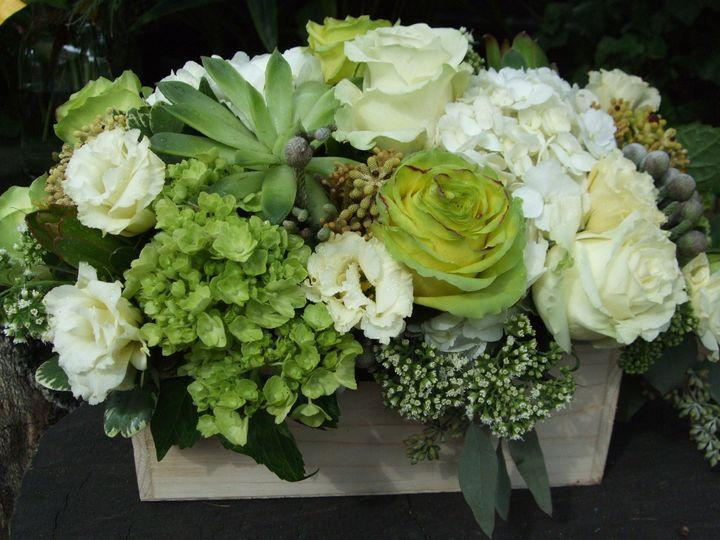 Tmx 1402594868633 Blog Photos October 037 Brooklyn wedding florist