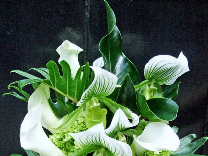 Tmx 1402595230795 Llorente Lucioni Ladies Slipper Bouquet3 Brooklyn wedding florist