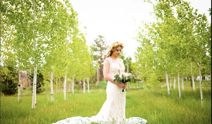 Shades of Green Floral & Events