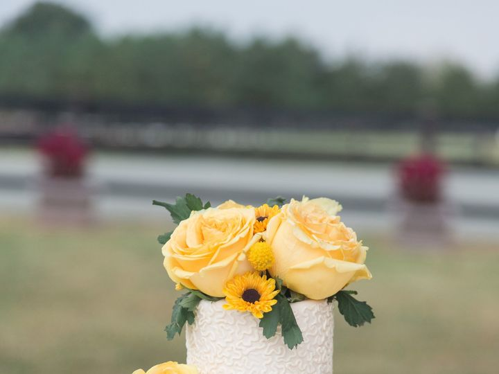 Tmx 1486348762698 Img0262 Warrenton, District Of Columbia wedding cake