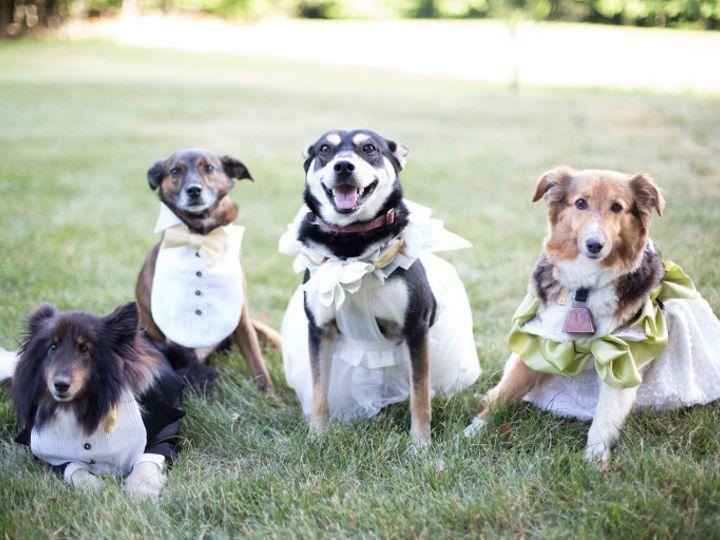 Tmx 1468590922734 Maksimak Wedding 2016 8 Elizabethtown, PA wedding planner