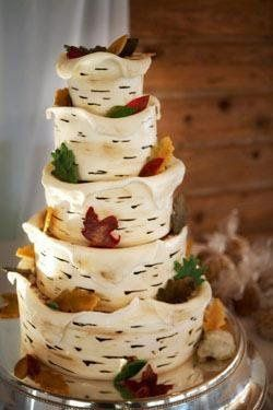 zweddingcakemissoulamontanaphotographercracklephotographybirchleaves