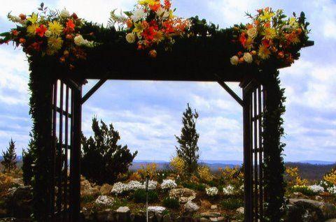 Tmx 1258040566633 Img0041 Branchville wedding florist