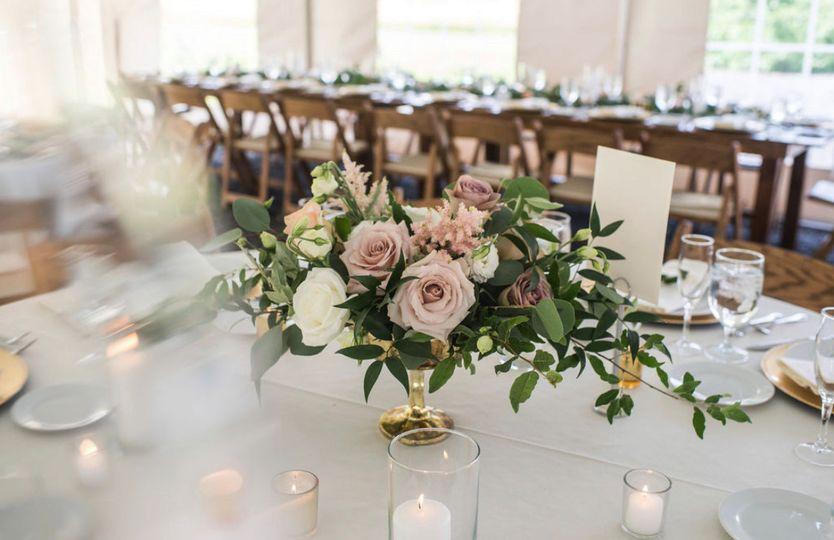 Nostrano Vineyards Wedding