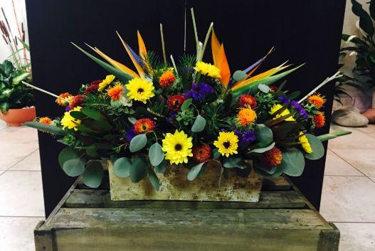 Tmx Download 1 51 102694 Troy, MI wedding florist