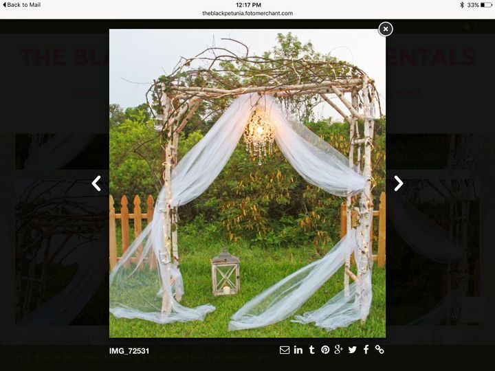 The Birchwood Arch. Includes grapevines. So romantic for a beach wedding.