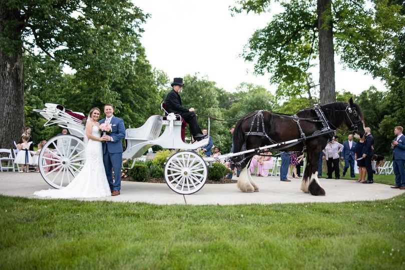 Arrive by  HorseDrawn Carriage