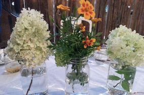 Lacey Event and Rentals