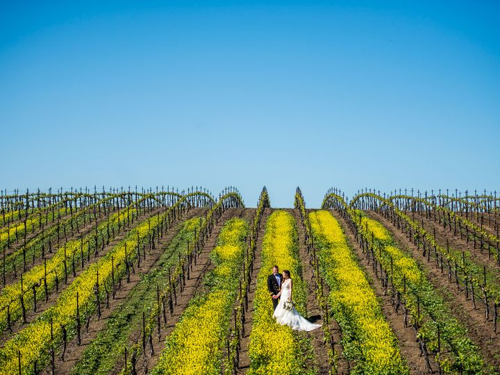 Tmx Davis 001 3847 Ig 51 443794 San Juan Bautista, California wedding photography